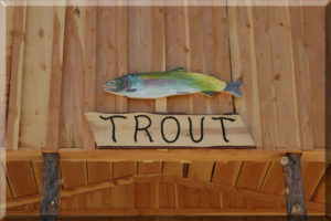Trout Cabin New Mexico Fly Fishing Rio Costilla